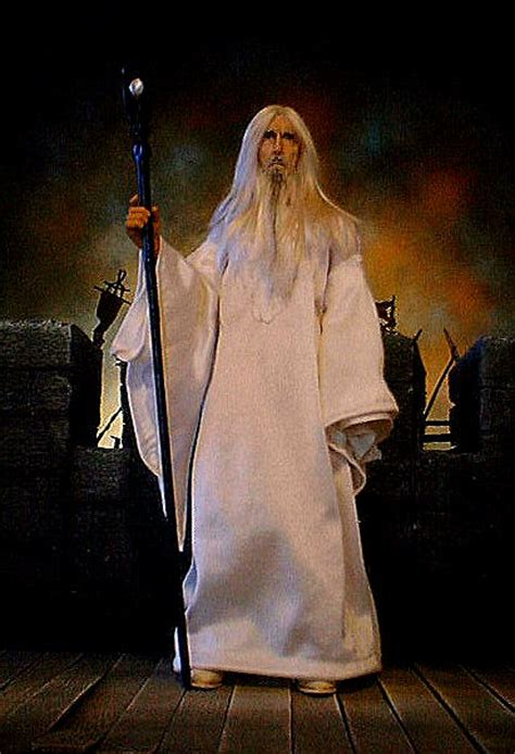 the white wizard s heroes