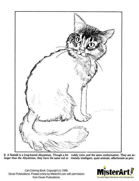 hairless cat coloring page free coloring pages of a hairless cat