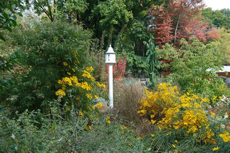 garden design in chester county naturescapes landscaping