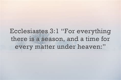 comforting bible verses about death of a child bible quotes about death of a child image quotes at