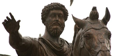 stoicism and the statehouse an philosophy serving a new idea books disciplines fields and virtues the stoic system in