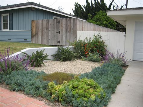 drought tolerant backyard designs drought tolerant landscape design photo gallery