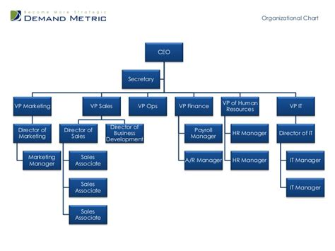 Organizational Chart Template Department Organizational Chart Template Word