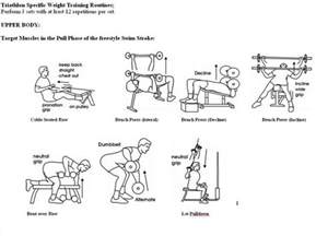 weight bench workout routine beginners four aspects of an exercise program s workout plan