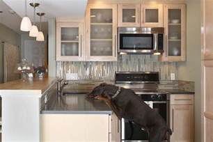 Galley Kitchen Remodeling Ideas Save Small Condo Kitchen Remodeling Ideas Hmd Online