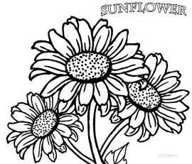 sunflower coloring page printable sunflower coloring pages for cool2bkids