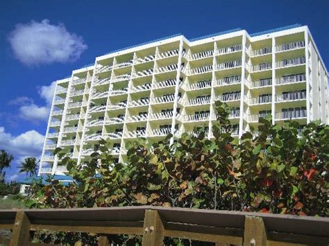condominiums tripadvisor apollo condominium picture of apollo condominiums marco island tripadvisor