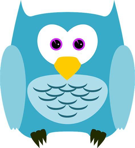 wallpaper owl biru free vector graphic owl bird animal plumage cute