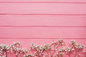 background lucu warna pink koleksi gambar hd