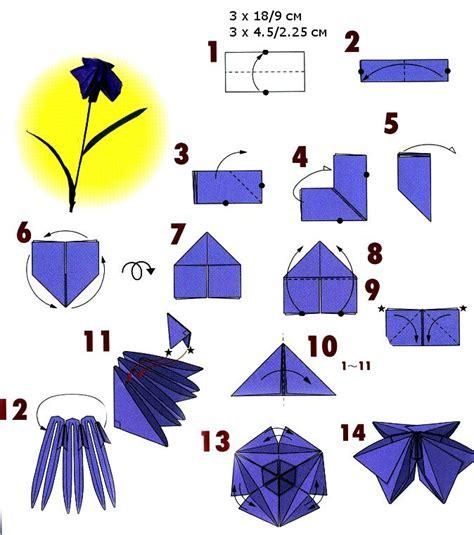 Iris Origami - iris paper