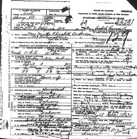 Illinois Department Of Health Vital Records So Many Ancestors January 2015