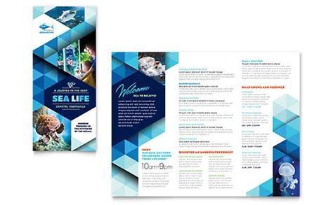adobe illustrator flyer template aquarium adobe illustrator brochure template