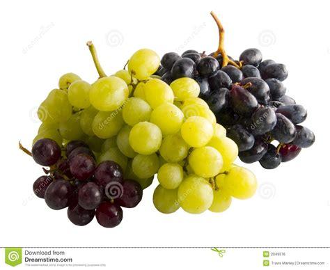 imagenes uvas rojas uvas rojas negras y verdes frescas imagen de archivo