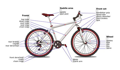 bike seat parts diagram bicycle parts diagram to print diagram site