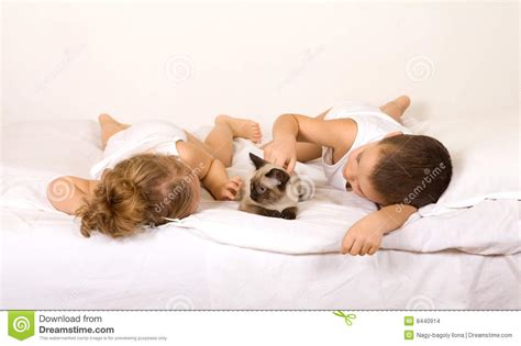 Laying In Bed by Laying In Bed With A Cat Stock Images Image