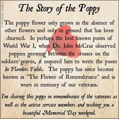 poppy pappy day lyrics 1000 images about god bless our veterans on pinterest
