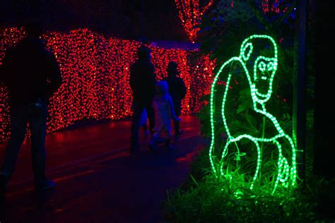the weekend u0026 the bond the oregon tale zoolights set to return nov 24 with more than 1 6 million