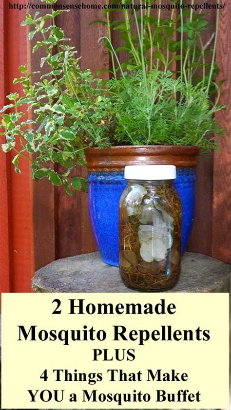 natural backyard mosquito control 17 best ideas about mosquito spray on pinterest diy