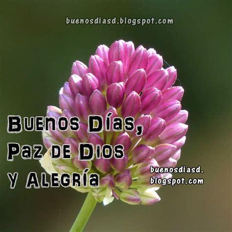 imagenes buenos dias en portugues pensamientos y reflexi 243 n de buenos d 237 as con la paz de dios
