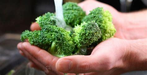 come cucinare broccoli come pulire e cucinare i broccoli unadonna