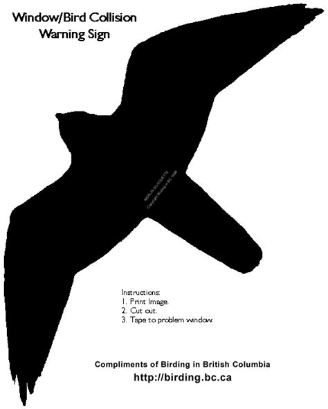 bird silhouette for window lightlycrunchy