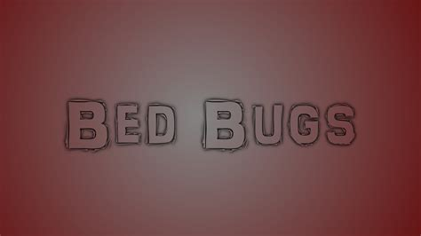 youtube bed bugs quot bed bugs quot crappypasta youtube