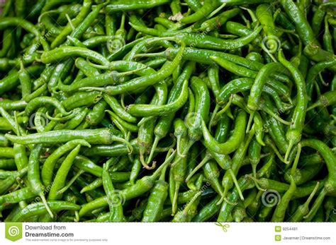 wallpaper of green chillies background of green chillies stock image image 9254481