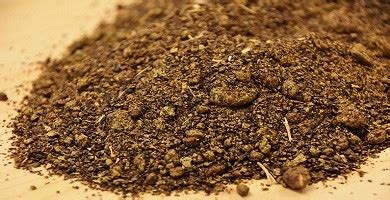 canola meal exporters, rapeseed meal suppliers, mustard doc