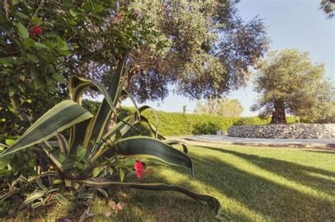 villaggio i giardini di atena offerte i giardini di atena a merine lecce in puglia
