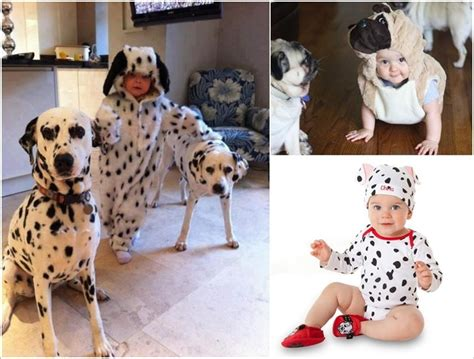 pug costume for baby 5 and costumes for babies