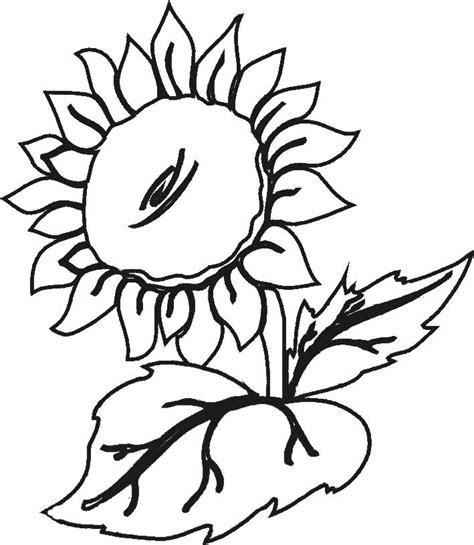 imagenes para pintar en tela dibujos para pintar tela flores dibujos para recortar y