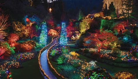 the butchart gardens holiday lights tour victoria bc