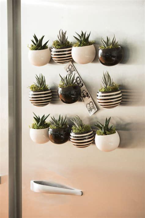 Air Plant Vases Indoor Succulent Garden Mini Magnet Succulent Garden Set