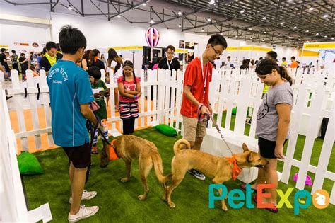 A Dogaes Dayaethe Pet Expo by Pet Expo 2015 Pet Expo Singapore 2018