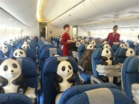 How To Make A Paper Mache Panda - hong kong invaded by 1600 paper mache pandas news