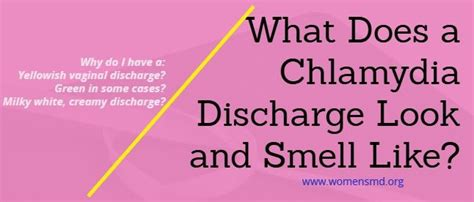 chlamydia discharge color chlamydia discharge color smell s health