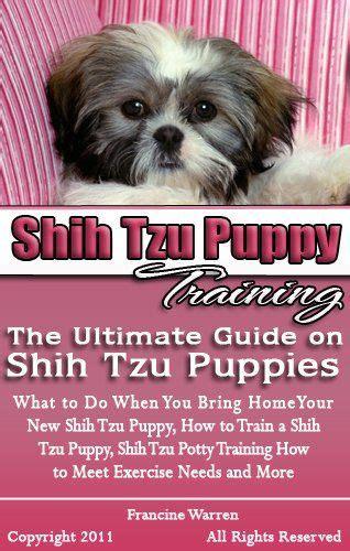 shih tzu potty tips best 25 shih tzu puppy ideas on shih tzu shih tzu and pictures