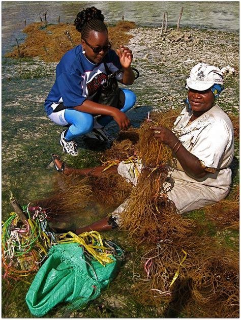 Mutia Cape western indian regional initiative science initiative