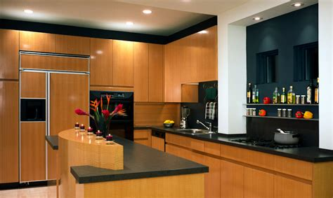 Kitchen Design Minneapolis Kitchen Design Minneapolis Best Of Kitchen Design Minneapolis Redroofinnmelvindale