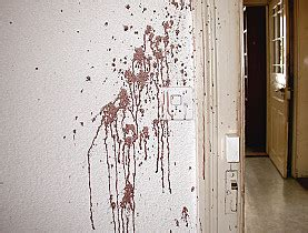 bloodstain pattern photography there will be blood at fallout new vegas mods and community