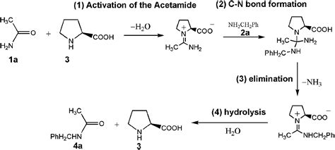 L Mechanism by Mechanistic Insights Into L Proline Catalyzed Transamidation Of Carboxamide With Benzylamine