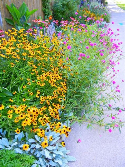 full sun flower bed ideas photograph pink flowers