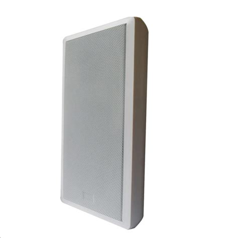 Speaker Flat silm wall mounting type speaker box from china manufacturer ningbo hony acoustic co ltd
