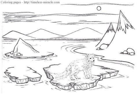 arctic fox habitat drawings