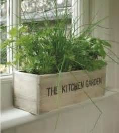 kitchen herbs kitchen herb garden ideas by ammazed home garden ideas pinterest