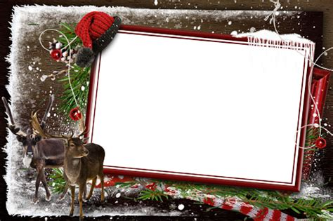 photo frames waiting  santa  cold winter forest
