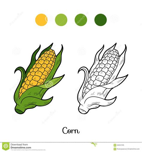 coloring book fruits and vegetables corn stock vector