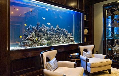 living room aquarium top 7 aquarium designs for your interior design