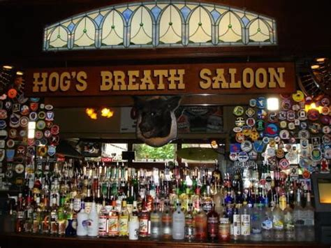 top bars in key west key west florida the top bars and watering holes