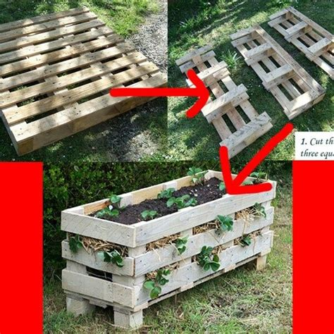 Patio Pavers Pallet Pin By Connie Paulsen On Gardening